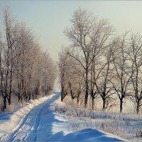 Утренний мартовский дорожный пейзаж.. :: Алексей Макшаков