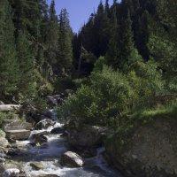 Река в горах :: Владимир