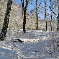 В марте после снегопада :: Милешкин Владимир Алексеевич