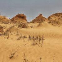 Пустыня... :: M Marikfoto