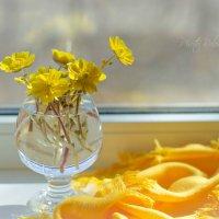 солнечное настроение :: Tatyana Belova