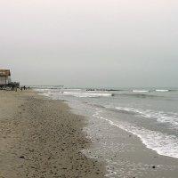 Январский пляж. Балтика. :: Elena N
