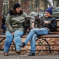 Семейка на скамейке :: Владимир Самсонов