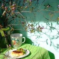 Дыхание весны :: Елена Фалилеева-Диомидова