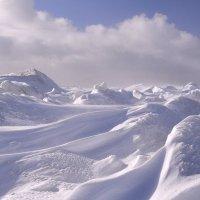 Торосы - замерзшие волны... :: Елена Третьякова