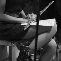 Флейта :: Елена Васильева