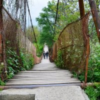 Мост. :: Береславская Елена