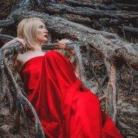 В лесу :: Наталья Захарова