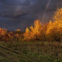 Сквозь грозовые тучи :: Владимир Макаров