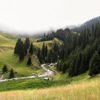горные виды :: Горный турист Иван Иванов