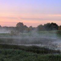 Рассветный туман :: Павлова Татьяна Павлова