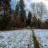весна :: Света Кондрашова