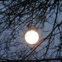Великие Луки. Март. Луна... :: Владимир Павлов