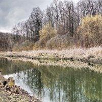 озеро в лесу :: юрий иванов