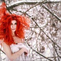 Рыжий лёд :: Mikhail Andreev