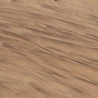 Графика на песке :: Надежда Кунилова