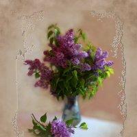 Сирень вернёт покой счастливых дней… :: Людмила Богданова (Скачко)