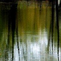 Мой тихий пруд.... :: Валерия  Полещикова