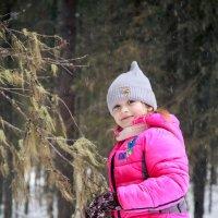 В лесу :: Дмитрий Стёпин