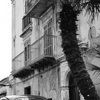 ФИАТ, пальма и балкон. :: Александр Амеличкин