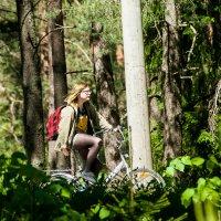 Прогулки в лесу :: Валерий Смирнов