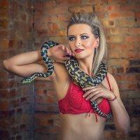 Укратительница змей. :: Виктор Седов