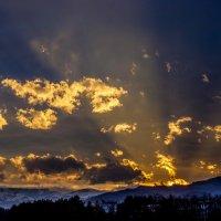IMG_1440 :: Олег Петрушин