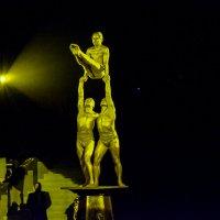 Циркачи :: Света Кондрашова