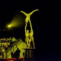 Акробаты :: Света Кондрашова