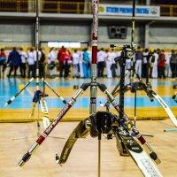 Sumy archery :: Alexandr Mozharenko