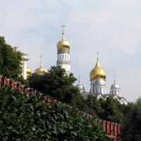 Москва златоглавая :: Grey Bishop