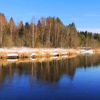 Опять про март.... :: Павлова Татьяна Павлова