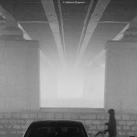 туман :: Михаил Жигунов