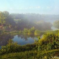 Река Ворона под дымкой тумана :: Сергей