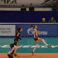 Просто волейбол :: Savayr