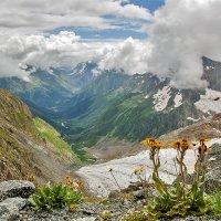 Лето в горах :: Иван