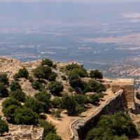 Развалины крепости Нимрод, средняя часть. Галилея, Израиль :: Witalij Loewin