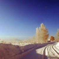 Мартовское утро. На въезде в деревню Красная Гора. :: Николай Туркин