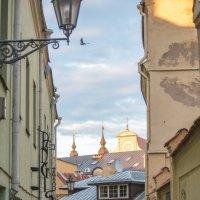 По улицам Вильнюса :: MVMarina