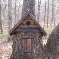Домик для лесных жителей :: Маера Урусова