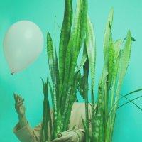 Green world series :: Karen Khachaturov