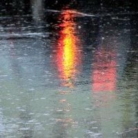 дождь :: Olga