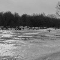 Скованная льдом. :: Андрий Майковский
