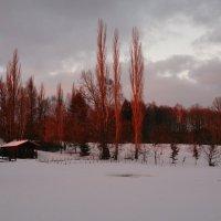 Январь, вечер. :: Николай Чайкин