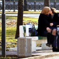 Роза прекрасна, а поцелуй лучше! :: Владимир Болдырев