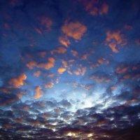 Вечернее небо :: Сергей Добрыднев