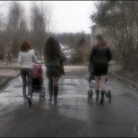 Три мамы молодые :: Алексей Бажан