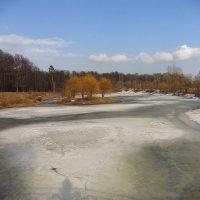 Бабаевский пруд в марте :: Андрей Лукьянов