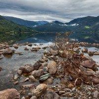 Александр Королёв - Прозрачные воды :: Фотоконкурс Epson
