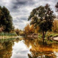 Николай Красный - Осень :: Фотоконкурс Epson